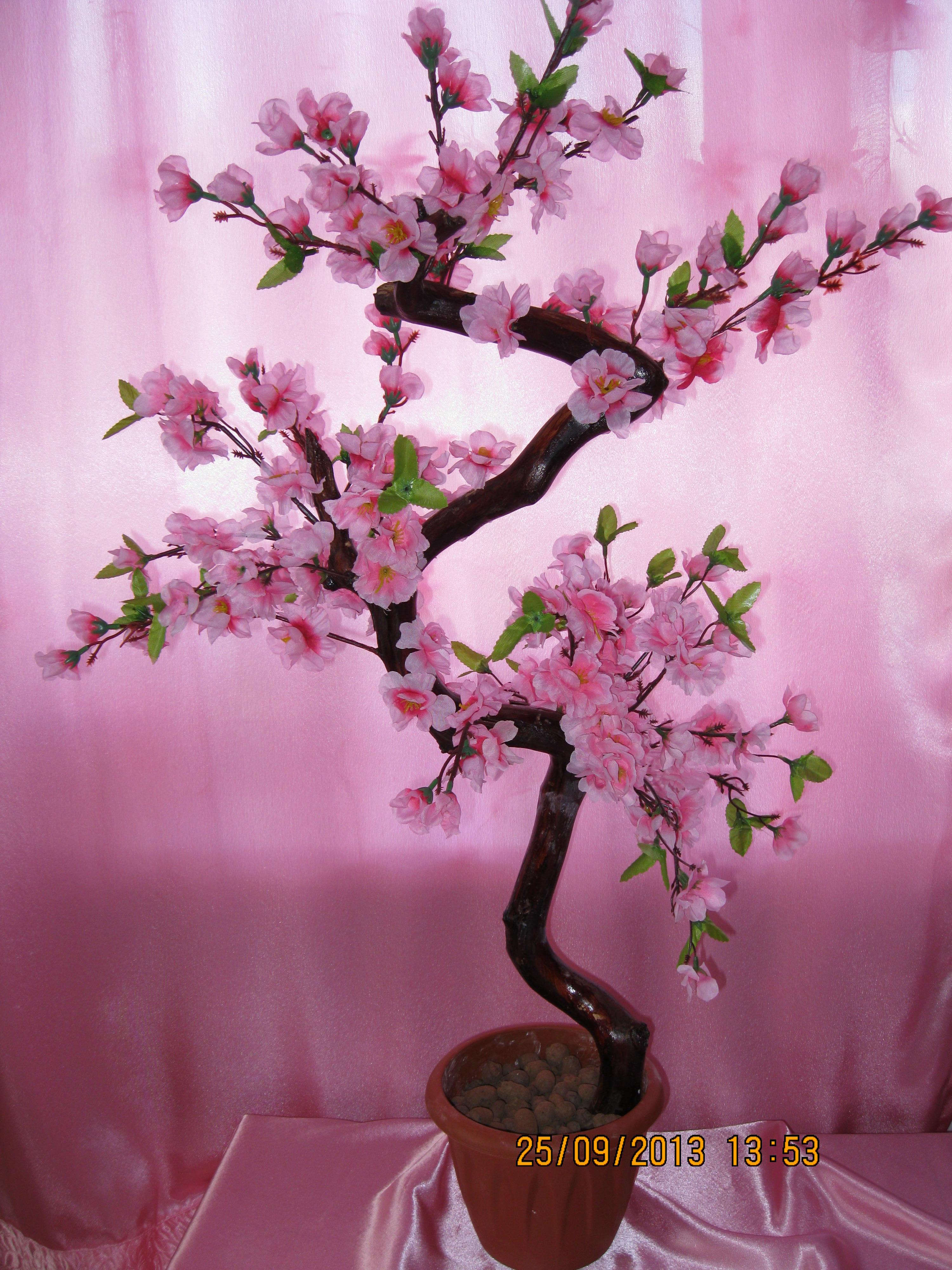 Как сделать дерево сакуры большое